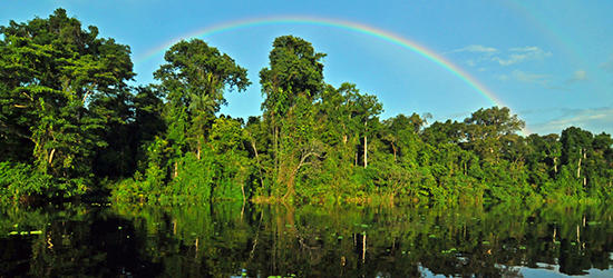 Amazon River Cruise Vacations