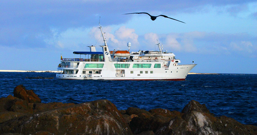 Cruising Built for the Galapagos Island